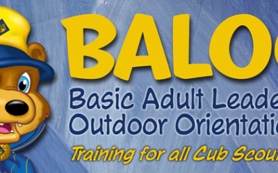 BALOO Training – September 19-20, 2020