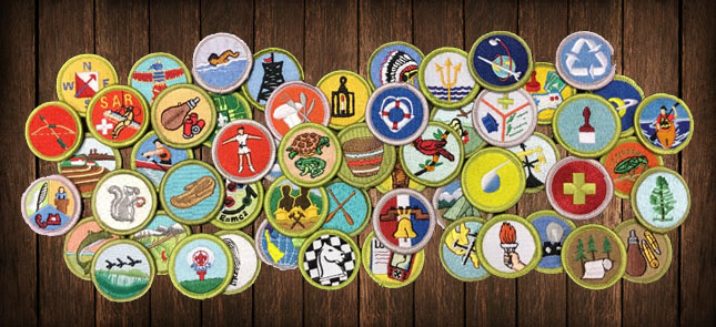 Obtaining rank advancement and merit badges from the Scout Shop